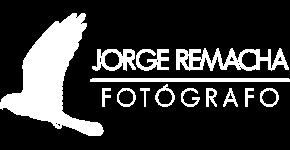 Jorge Remacha
